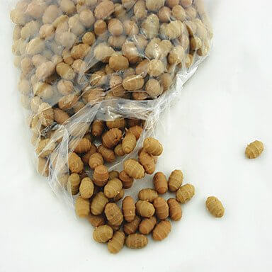 Carp Tiger Nuts