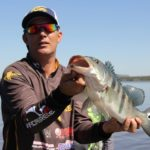 5 Step Guide to Successful Fishing with Jigs