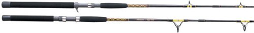 Shakespeare Ugly Stik Bigwater Rod