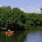 Sit In vs. Sit-On-Top Kayak for Fishing:The Great Debate