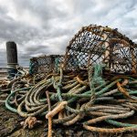 How to use a crab trap – Sensational Guide