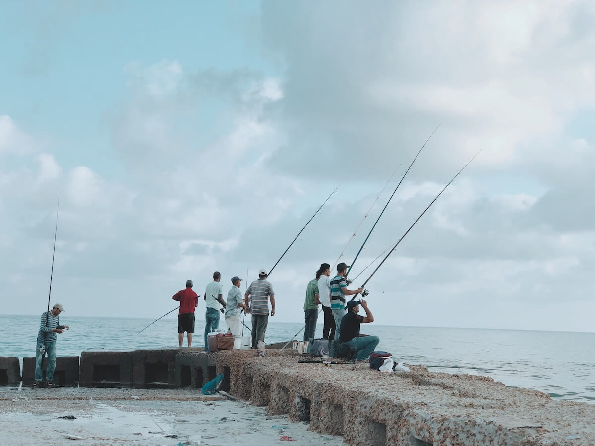 group of people fishing