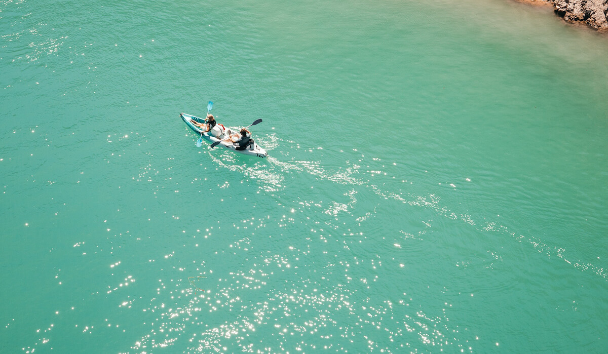 people kayaking in river