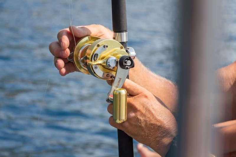 musky fishing reel